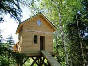@Lise Giguère - Bien que toujours en construction, la petite maison dans les arbres se fait bien invitante.