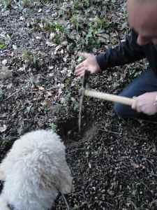 On creuse la terre à l'aide d'un fiouli