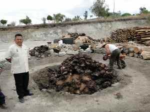 DSC06915- Coeurs d'agaves qui brule - Santiago Mazatlan