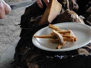 DSC06925-agaves cuites - Santiago Mazatlan
