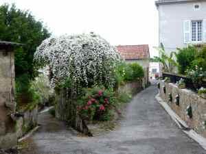 @lisegiguere - Une jolie petite ville calme et tranquille