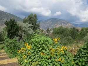 @lisegiguere - La magnifique et fertile Vallée de l'Okanagan