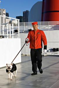Eh oui, les chiens sont les bienvenus à bord du Queen Mary 2