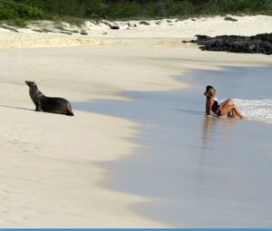 @lisegiguere - Une plage des Galapgos