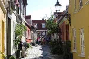 @lisegiguere - D'anciennes écuries devenues de bien jolies maisons