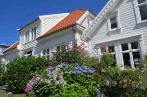 @lisegiguere - Des petites maisons blanches toutes fleuries