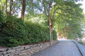 @lisegiguere - Ces routes en pierre ont été pensées pour les chevaux