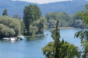 IMG_0101- Vue sur le Rhin, de ma chambre - Stein am Rhein