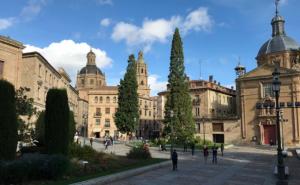 @lisegiguere - Vue du parvis de la Cathédrale de Salamanque.