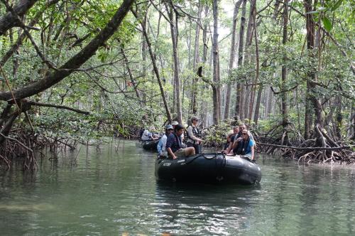 @lisegiguere - En zodiac dans une forêt de mangroves de l'Archipel Mergui. Myanmar