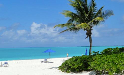 @lisegiguere - Nuances de bleu, sable blanc et vert profond